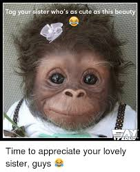 Sister Memes Funny - tag your sister who s as cute as this beauty time to appreciate