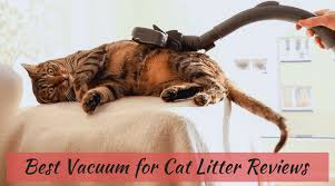 best vacuum for laminate floors reviews and ratings of 2017