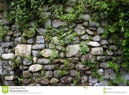garden wall garden wall at ninfa near rome royalty free stock images image