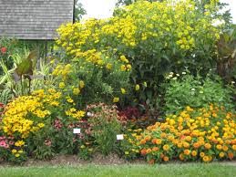 flowers gardens and landscapes basic design principles and styles for garden beds proven winners