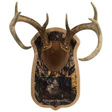 camo deluxe antler photo display kit walnut hollow country