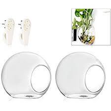 Hanging Glass Wall Vase Amazon Com Clear Glass Wall Mounted Plant Terrariums Hanging