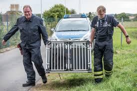 Polizei Bad Schwalbach Feuerwehr Und Polizei Fangen Entlaufenes Känguru Wiesbaden112 De