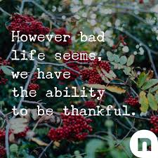 sermon on gratitude thanksgiving the secret to gratitude devotionals newspring church