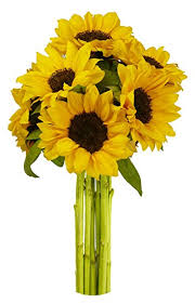 bouquet of sunflowers benchmark bouquets yellow sunflowers no vase