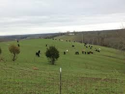 all categories eden shale farm
