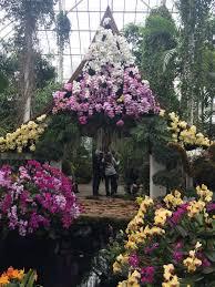 Botanical Garden Orchid Show New York Botanical Garden Orchid Show The Naturalized New Yorker