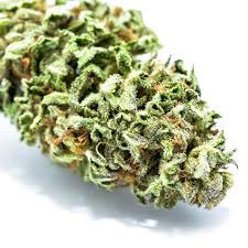 cannabis flower kam gardens archives cannabis buyer