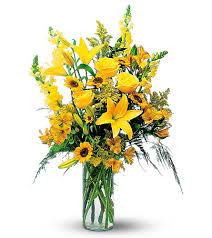 Flowers In Bradenton Fl - anniversary flowers delivery bradenton fl bradenton flower shop