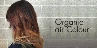 hair colours buy hair colours online at best prices in india