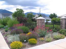 Backyard Desert Landscaping Ideas Awesome Desert Landscape Ideas Home Design Ideas