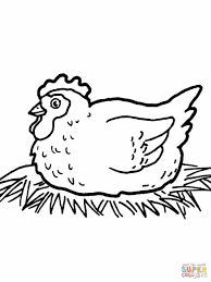 eggs animal realistic page chicken chicken coloring page animal