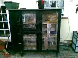 Homemade Rabbit Hutch My Rabbit Hutch Youtube