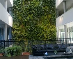 indoor plant wall indoor plant wall suppliers and manufacturers