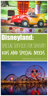 disneyland experience what to know about special services for