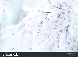 gentle soft blurred winter new years stock photo 491238820