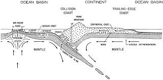 6 types of coastal zones similarities and differences by douglas