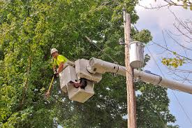 Ohio Edison Outage Map by West Penn Pledges End To Frequent Power Interruptions Tree Work A