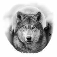 black and grey wolf diablos wolf