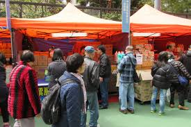 Market Stall Canopy by