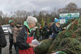new york national guard delivers trees for troops u s