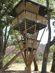 Tree House Home 63 Best Contemporary Architecture Images On Pinterest