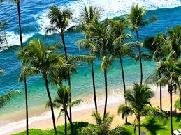 Hawaii Travel Trunks images Round trip flight deals to hawaii are as low as 298 business jpg