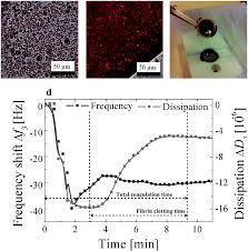 design of anticoagulant surfaces based on cellulose nanocrystals
