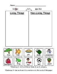 best 25 kindergarten science ideas on pinterest kindergarten