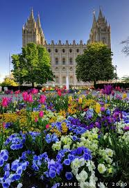 Flower Shops In Salt Lake City Ut - best 25 salt lake city utah ideas on pinterest salt lake city