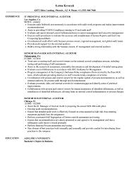 Internal Resume Sox Internal Auditor Resume Samples Velvet Jobs