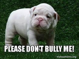 Bully Meme - please don t bully me make a meme