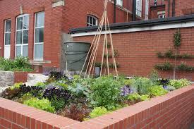 ornamental edibles edible landscaping