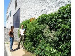 Urban Wall Garden - greenroofs com projects urban farming food chain los angeles