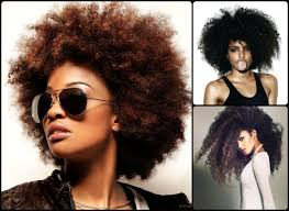 hairstyles download natural hairstyles for black women albino models black women