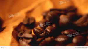 Beautiful Coffee Beautiful Coffee Beans Close Up Stock Video Footage 488703