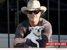 mickey rourke my dog will live forever tmz com
