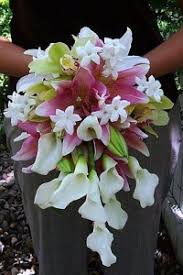 stephanotis flower wedding flowers from country flowers herbs your local