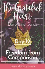 freedom from comparison day 12 finding and