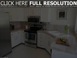 How To Paint My Kitchen Cabinets White What Color Should I Paint My Kitchen Cabinets Home Design Ideas