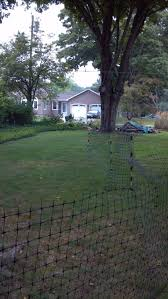 my alternative to electric fences backyard chickens