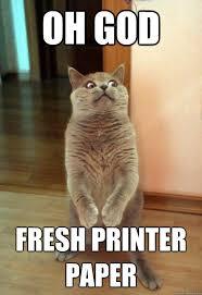 Printer Meme - oh god fresh printer paper cat meme cat planet cat planet