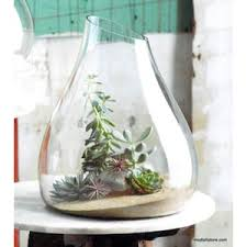 glass terrariums u2013 modish store
