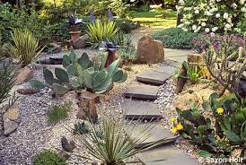 Rock Garden Succulents Hardy Succulents In California