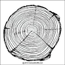 tree rings images Concord 9th tree rings stamp sets hallmark scrapbook jpg