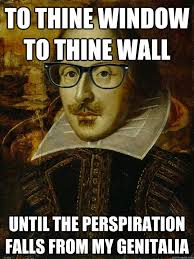 To The Window To The Wall Meme - to thine window to thine wall until the perspiration falls from my