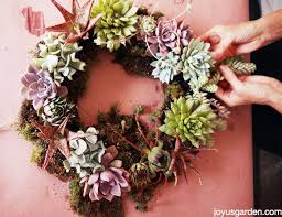 How To Make A Succulent Planter 5 Easy Steps To Making A Living Succulent Wreath