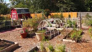 creative vegetable garden creative of vegetable gardening in