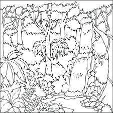 preschool jungle coloring pages coloring pages tropical coloring pages color jungle coloring pages