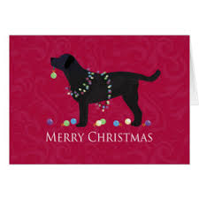 black lab greeting cards zazzle